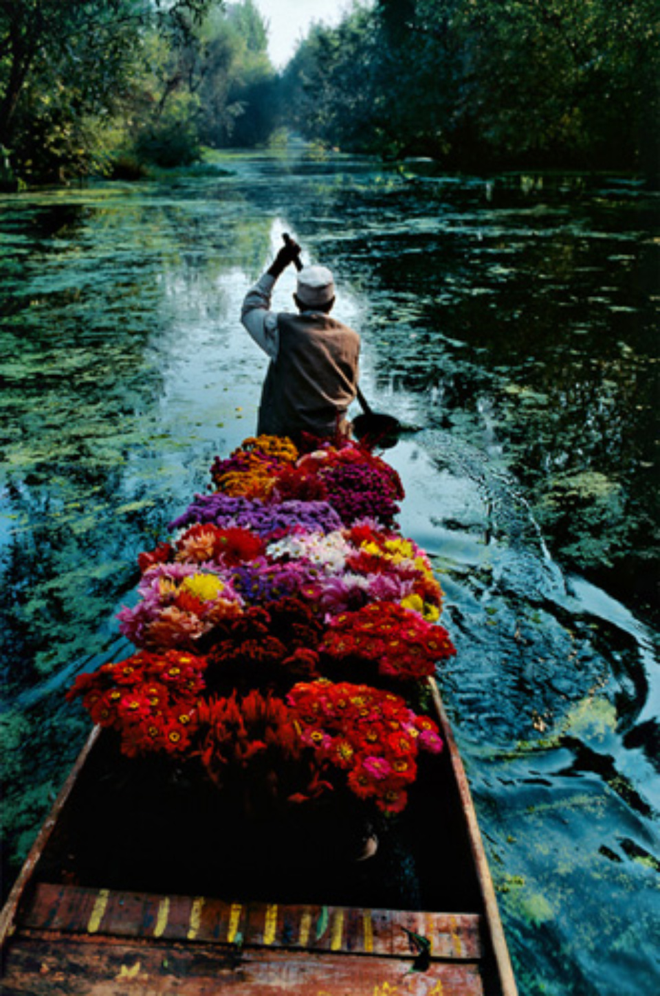 Steve McCurry: Kashmir Flower Seller Dal Lake, Srinagar, Kashmir, 1996 Signed, titled, dated and numbered on verso C-print 60 x 50 cm // 101 x 76 cm Editioned