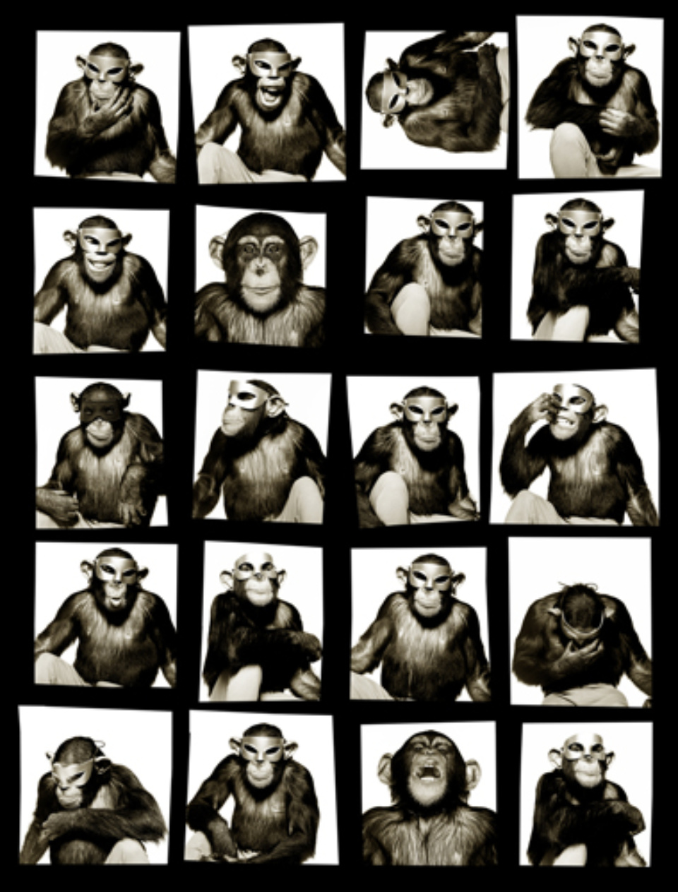 Albert Watson: Monkeys with Masks New York City, 1994 Artist label on verso Archival pigment print 142 x 107 cm Ed. 10