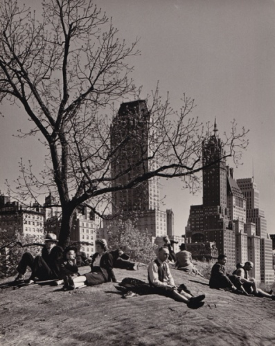 Andreas Feininger New York Central Park 1940 Vintage gelatin silver print Signed on verso c 18 x 24 cm