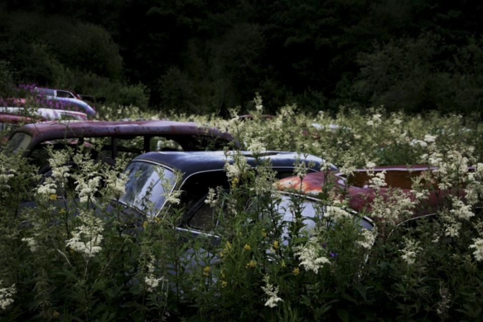 Antje Bakker: Offroad #4 Archival pigment print Signed, titled and numbered 50 x 83 cm Ed. 7