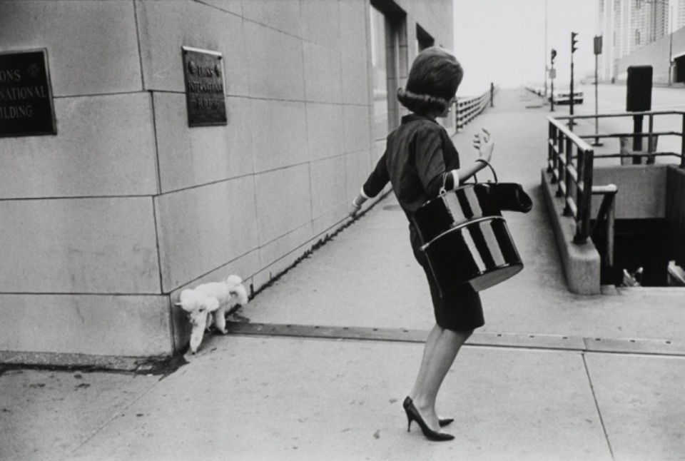 Bruce Davidson: Woman with hat box walking her dog Chicago, 1963 Gelatin silver print, printed later Signed on verso 40 x 50 cm
