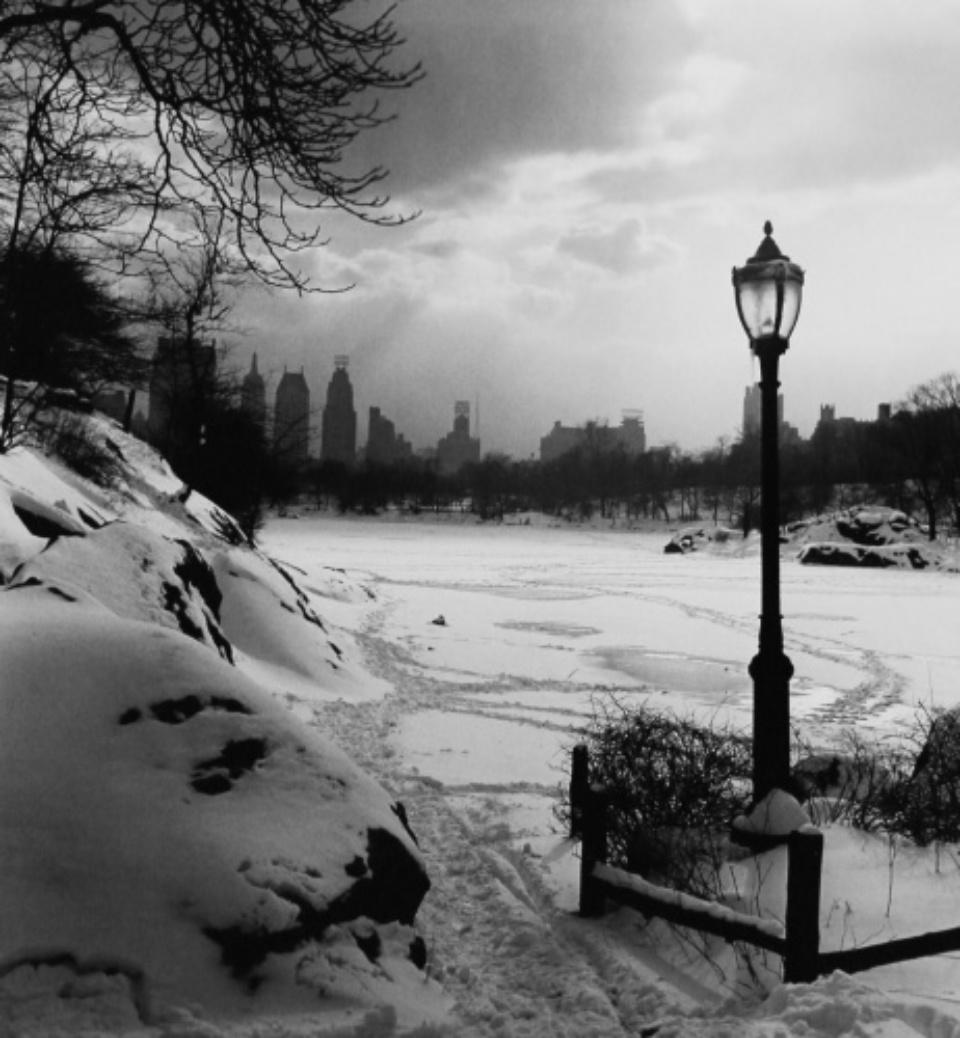 Fred Stein: Central Park Snow