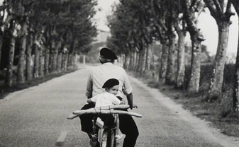 Elliott Erwitt Provence France, 1955 Gelatin Silver Print Signed, titled, dated Available in different formats