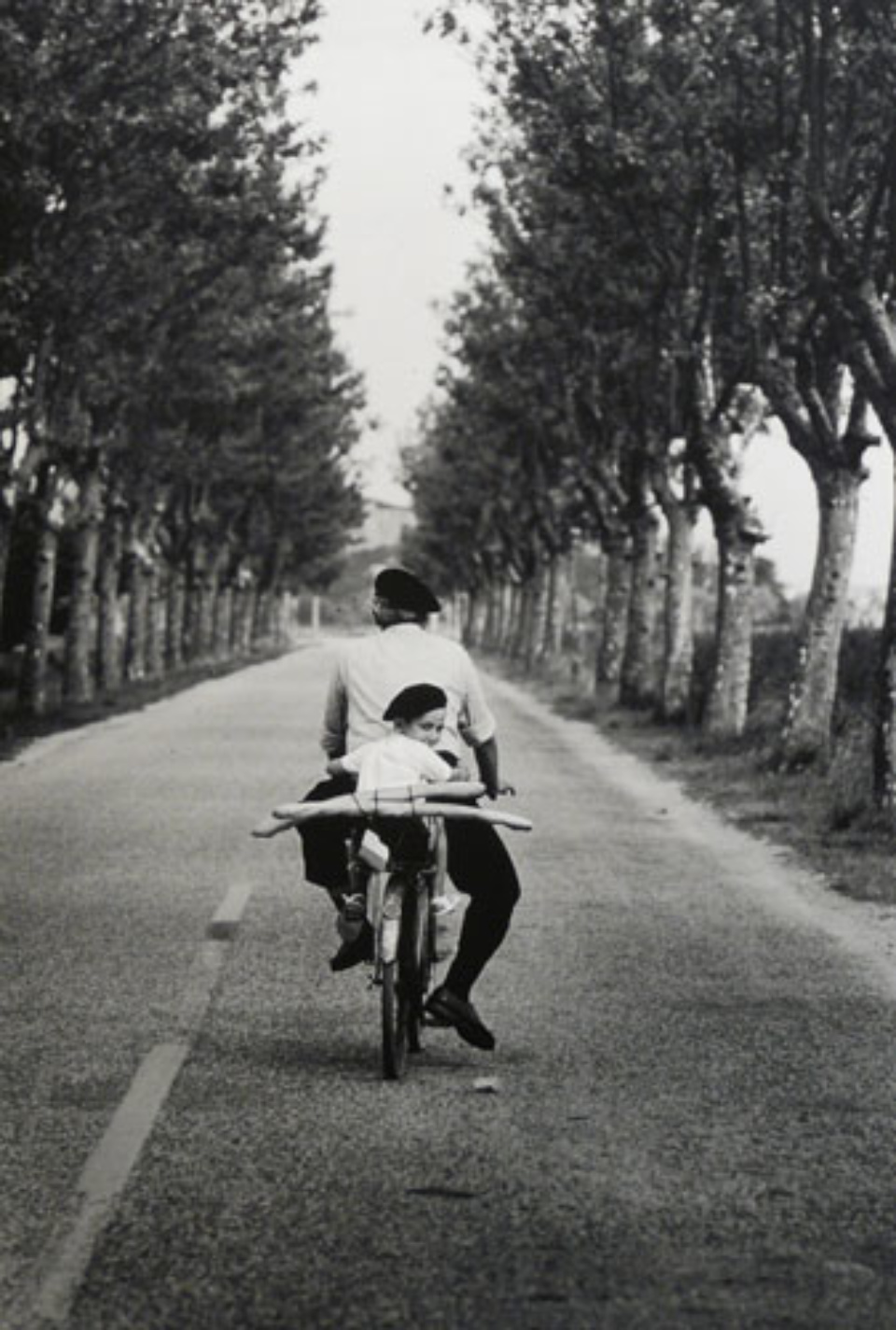 Elliott Erwitt: Provence France, 1955 Gelatin Silver Print Signed, titled, dated Available in different formats