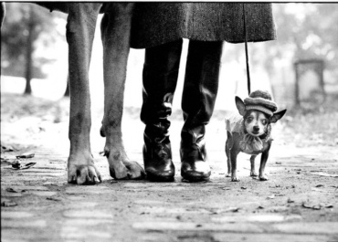 Elliott Erwitt New York City 1974 Signed, titled and dated on verso Gelatin silver print, printed later