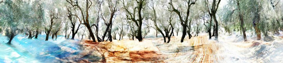 Georg Küttinger: Liguria 2009 Diasec Print 62,5 x 270 cm Ed. 2/3