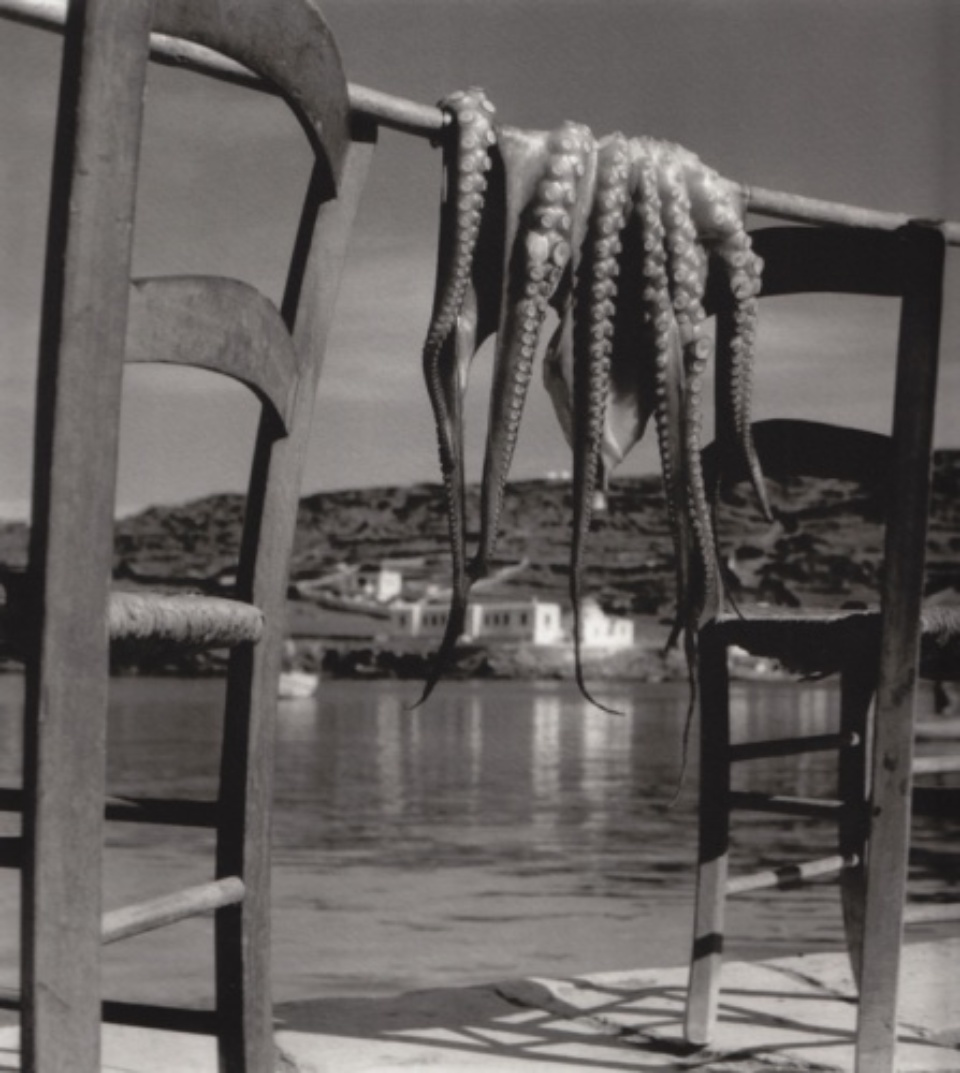 Herbert List Octopus Corfu Greece, 1938 Gelatin Silver Print Titled, dated and Estate stamp on verso 40 x 30 cm