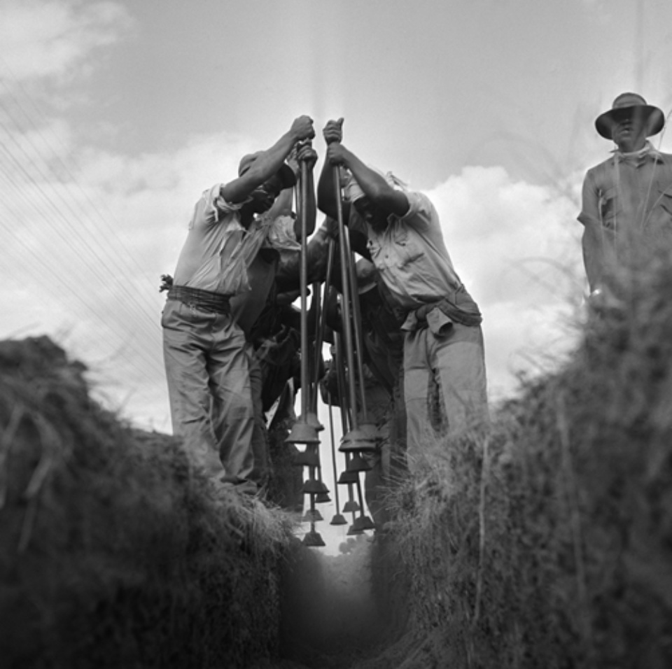 Jürgen Schadeberg Ditch workers Johannesburg, 1951 Signed and titled Gelatin silver print
