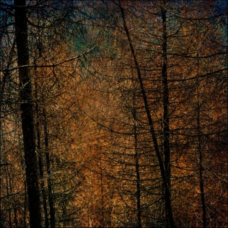 Mat Hennek: CH Gstaad I Gstaad, 2009 Labeled on verso Archival pigment print on alu dibond 110 x 110 cm Ed. 1/3