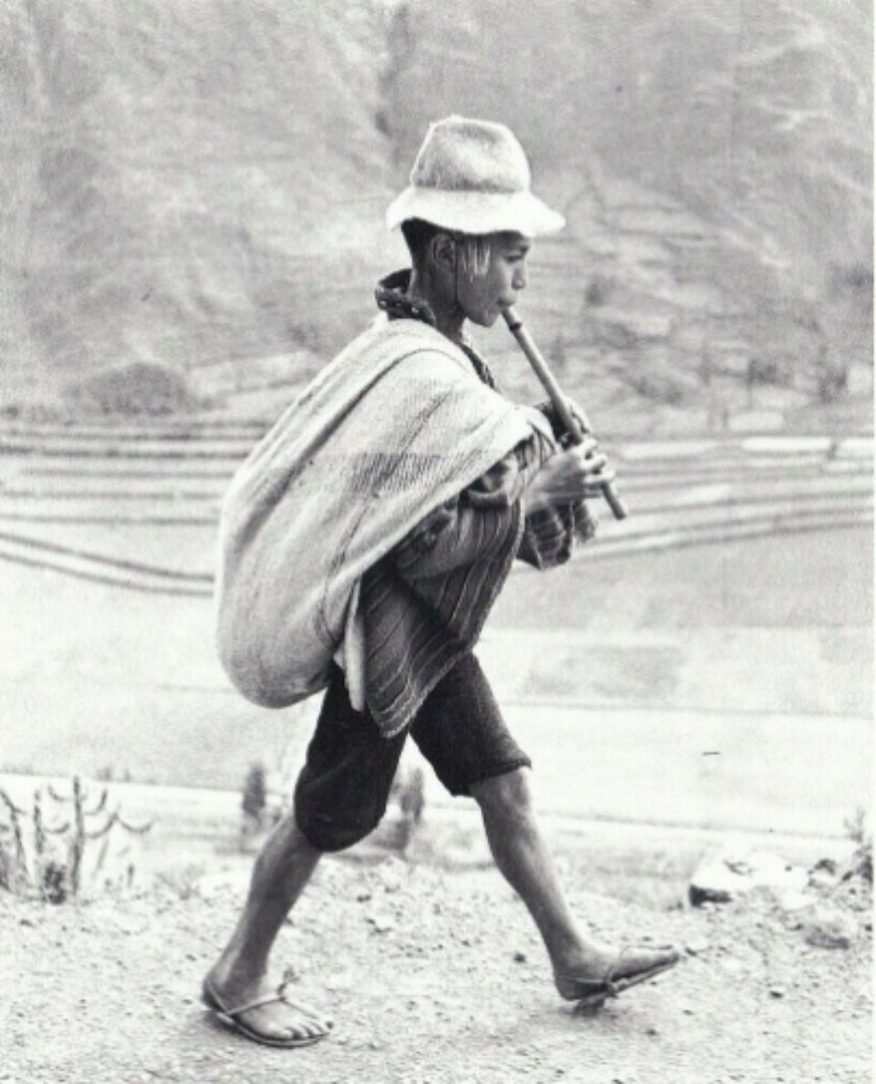 Werner Bischof: Flute Player Peru, 1954