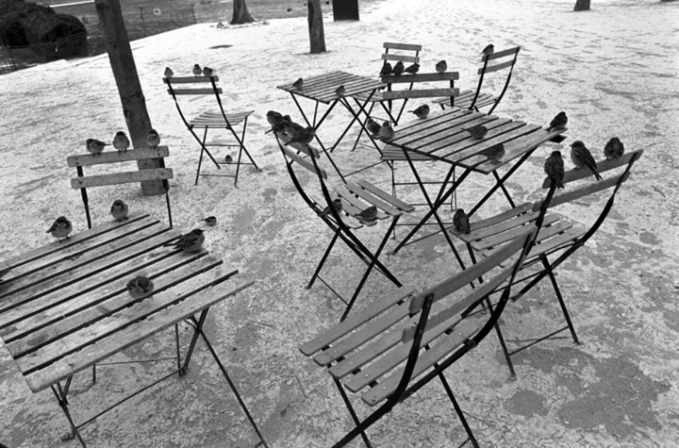 Sparrows Paris, 2010