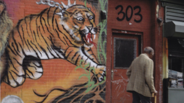 Sylvia Plachy Tiger on Avenue A ca. 1995 Signed, titled and dated on verso Archival Pigment Print