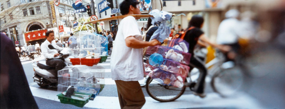 Sylvia Plachy Street Vendor of Small Animals Shanghai, 2004 C-Print
