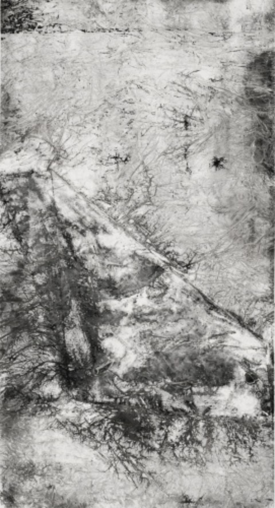 Zheng Chongbin: Dissolved Prime form ( e ) 2012 Ink, acrylics and wash on xuan paper L 92.5 cm x H 188 cm