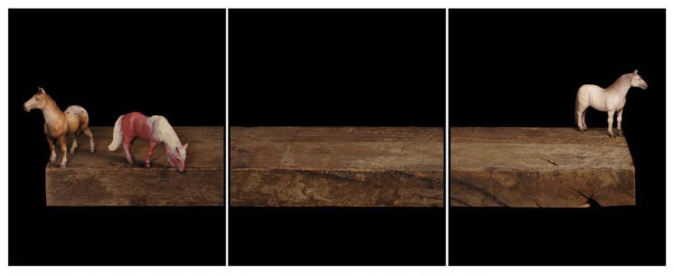Joachim Froese: Written in the past 4 2003 3 archival pigment inkjet prints 45 x 115 cm Ed. 6/12