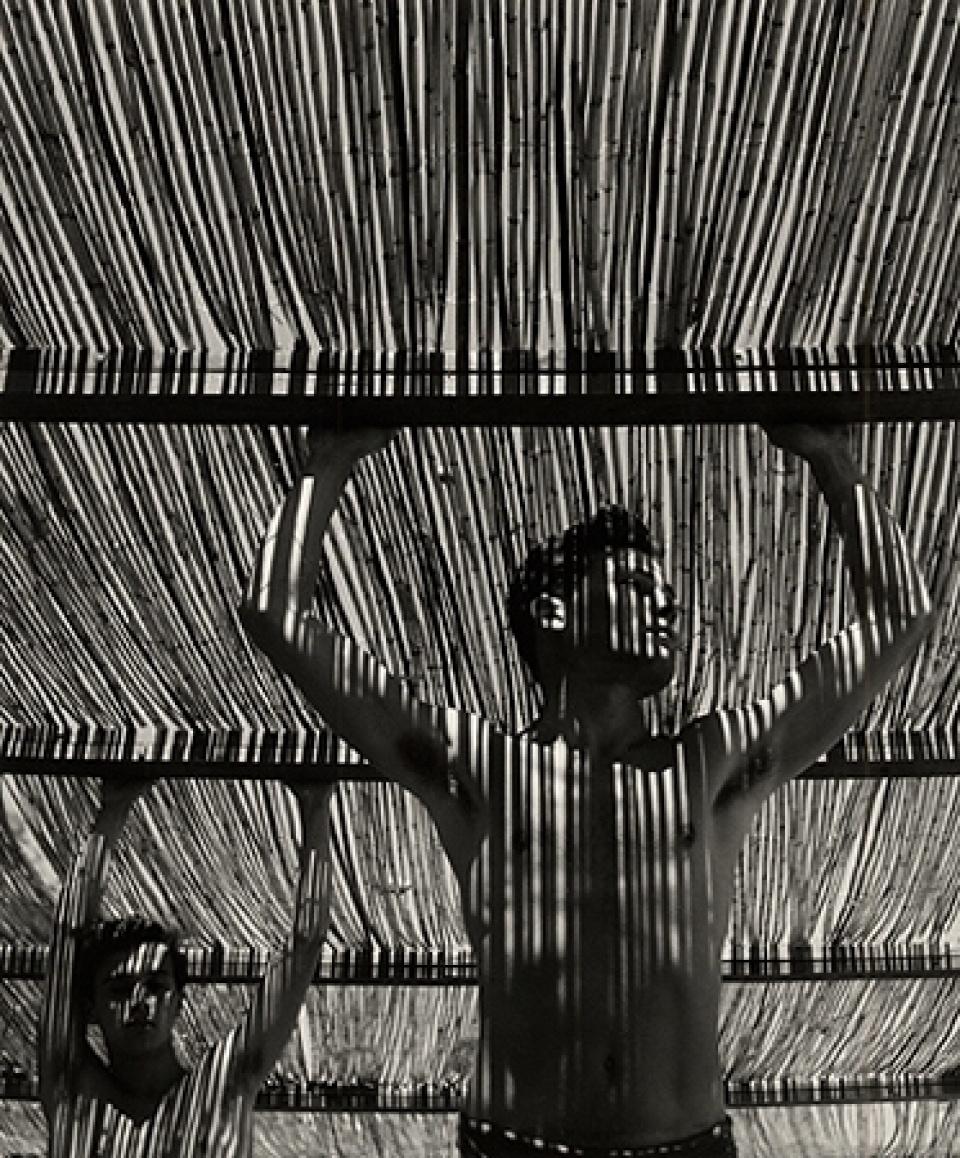 Herbert List. Young Man Under Reed Roof, Torremolinos, 1951