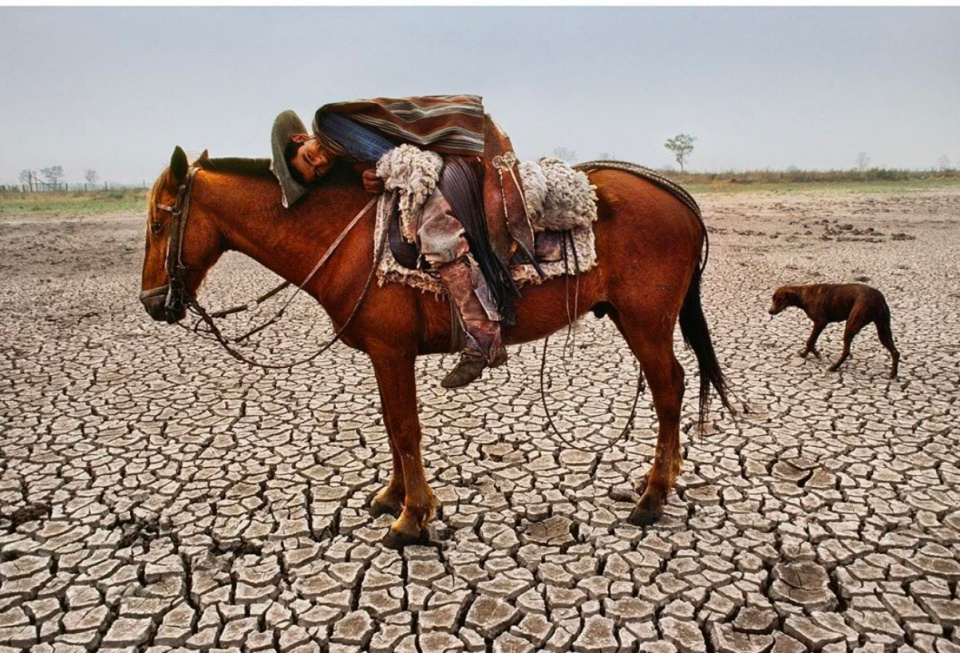 Steve McCurry. A cowboy leans on his horse in the #Chaco region of Paraguay, one of the driest and deforested regions of South America. 1988.