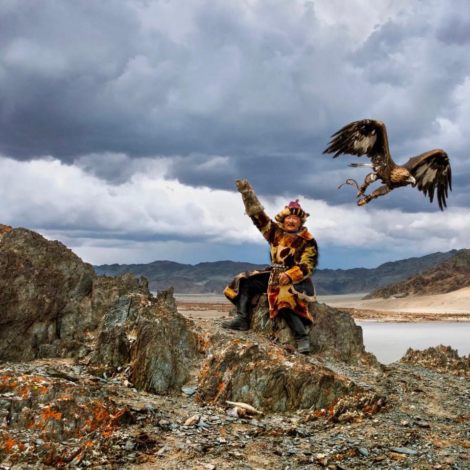 Steve McCurry. Man Hunts with Eagle, Mongolia, 2018