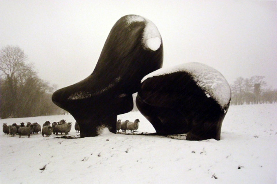 John Loengard. Henry Moores Sheep Piece